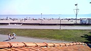 Бургас времето уеб камера 'Северен' плаж морски бряг плажна ивица Черно море от 'Уиндсърф Клуб' Free-WebCamBG