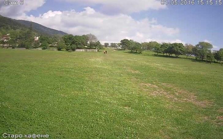 Местност 'Манастирска поляна' времето уеб камера над Сопот, до Сопотския манастир 'Свети Спас', в близост до лифт 'Сопот' и в подножието на Стара планина Free-WebCamBG